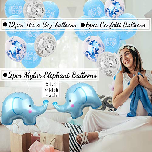 Boy Baby Shower Decorations | Jumbo Kit | Elephant Theme | Rain Meadow