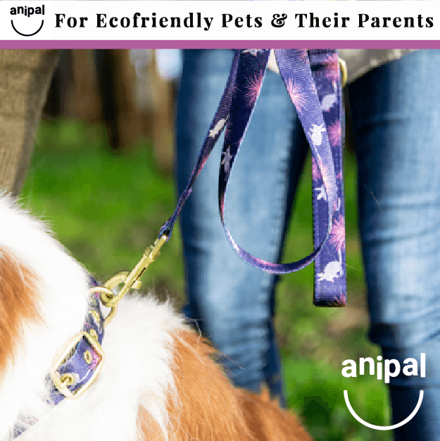 Billie the Bilby Dog Leash by Anipal - $45.95