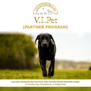 V.I.Pet Partner Program - List Your Product or Service - Black Dog Walking In Field