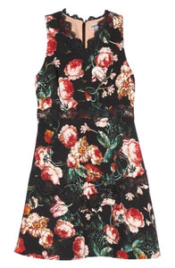 Chelsea28 Floral Lace Fit & Flare Dress in Black Foxie Floral Size M (NWT)