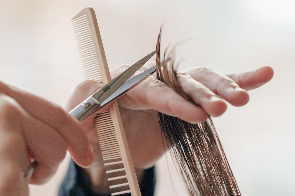 Snip! Snip! Snip! Why making time for a regular trim can transform your hair