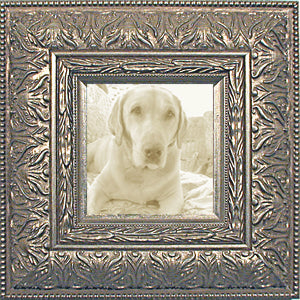 Silver Ornate Wide Photo Frame
