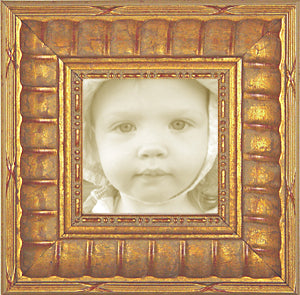 Wide Gold Stripe Traditional Photo Frame