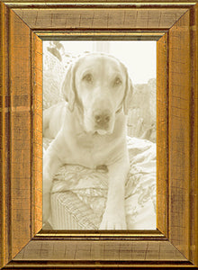 Antique Distressed Gold Panel Picture Frame