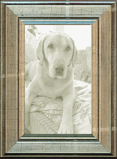 Antique Silver Panel Picture Frame