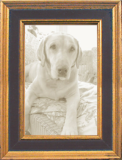 Black Gold Panel Traditional Picture Frame