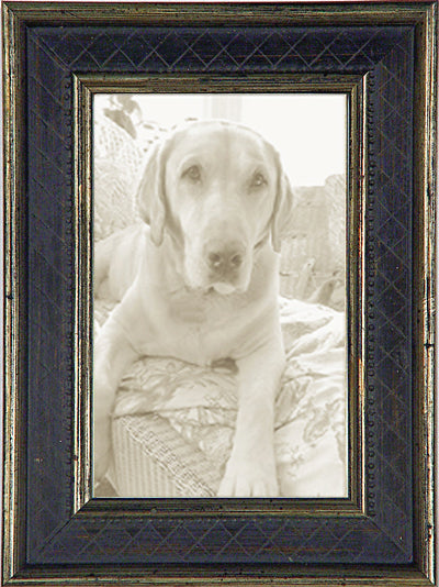 Black Silver Diamonds Traditional Picture Frame