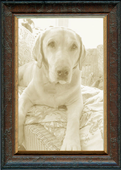 Thin Distressed Brown Burl Picture Frame