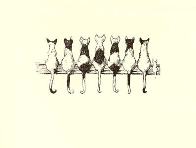 letterpress whimsical blank notes cats with attitude
