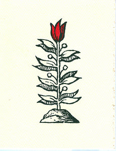 letterpress blank notes woodcut tulip