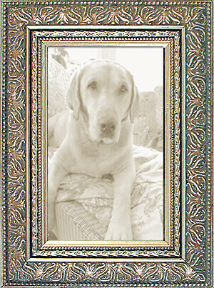 Ornate Picture Frames Silver Made in USA