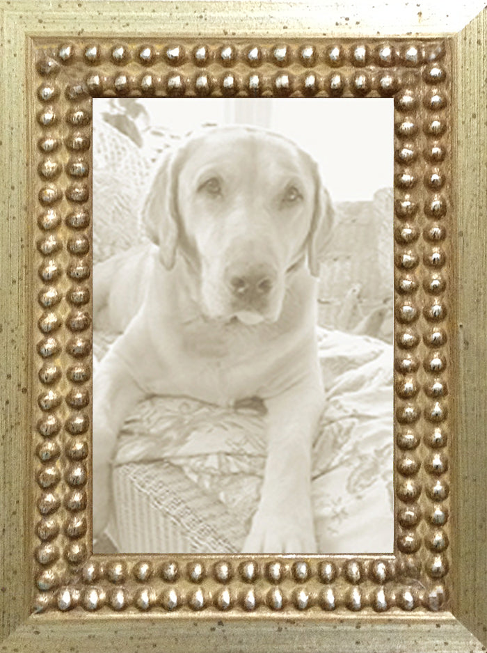 Silver Leaf Distressed Decorative Ornate Picture Frame