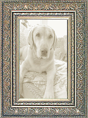 Silver Ornate Picture Frames