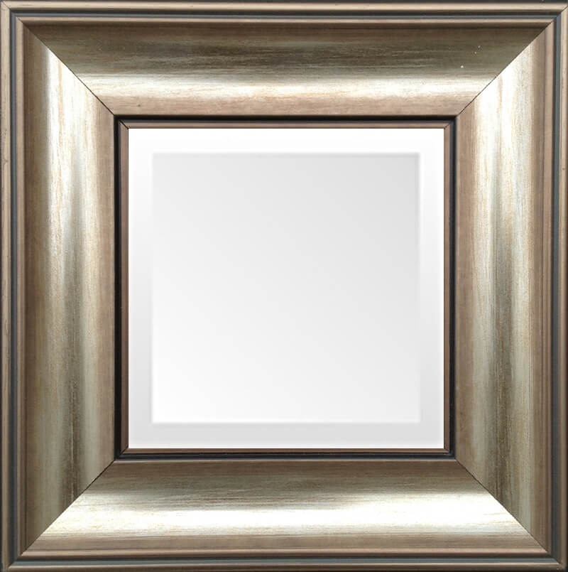 Soft Bronze Small Transitional Mirror