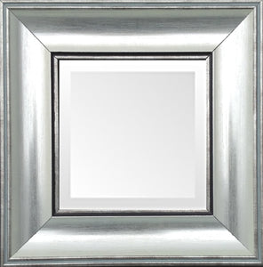 Soft Silver Small Transitional Mirror