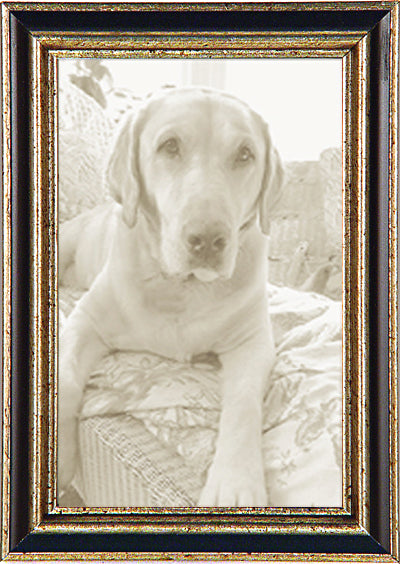 Thin Black Silver Traditional Picture Frame