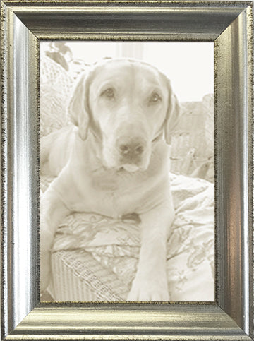 Silver Leaf Distressed Picture Frame