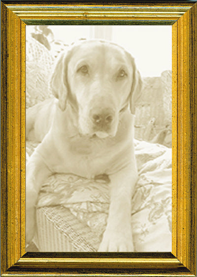 Thin Picture Frame - Gold Distressed