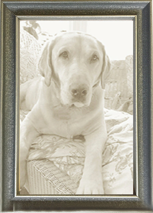 Thin Picture Frames Grey Italian