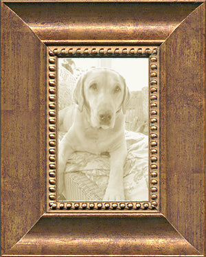 Wide Tuscan Bronze Picture Frame