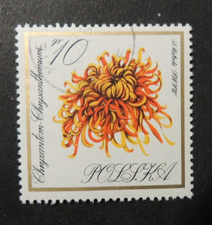 Poland 1966 flowers chrysanthemum fine used