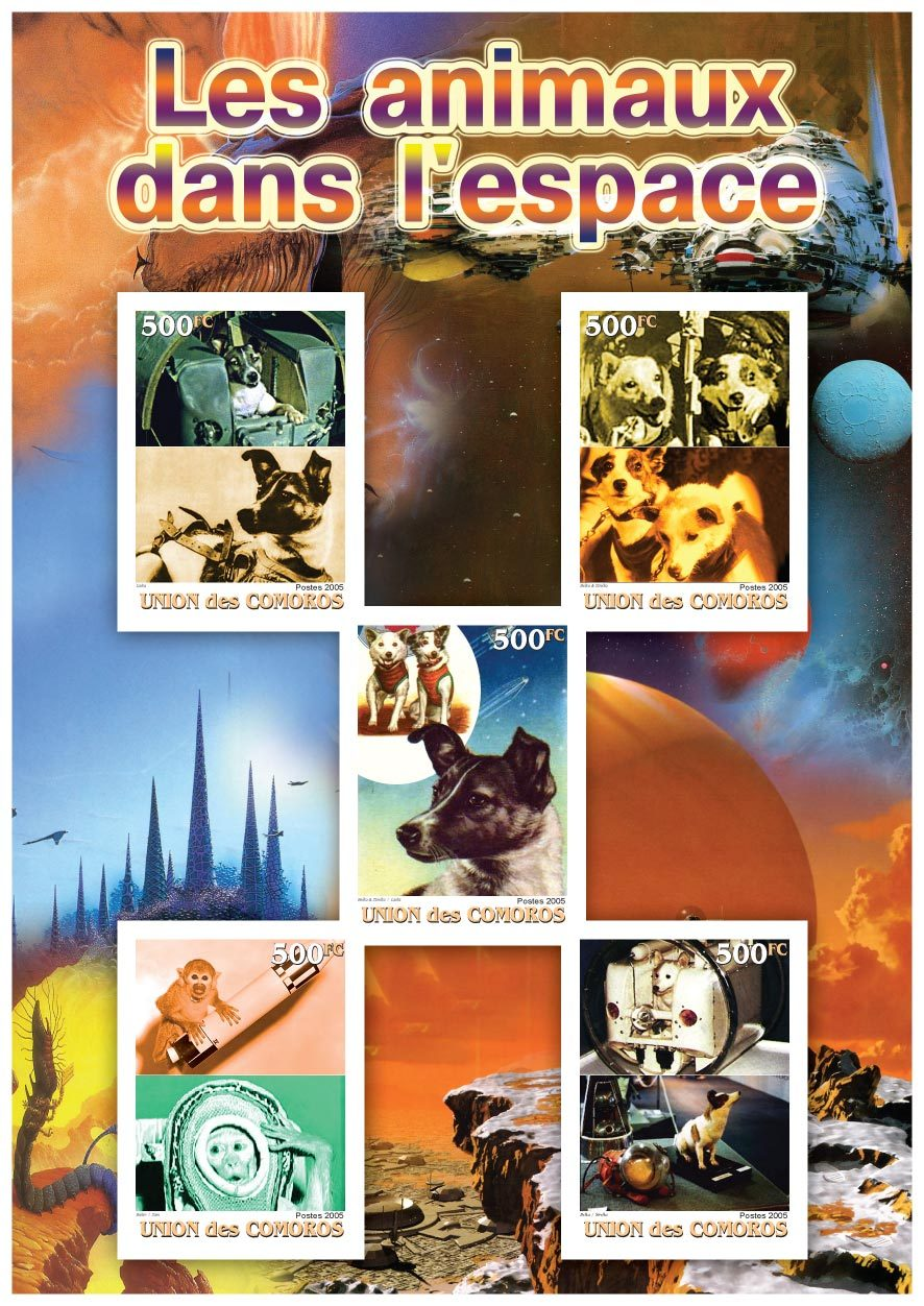 Comoros 2005  animals in space miniature sheet 5 values perf