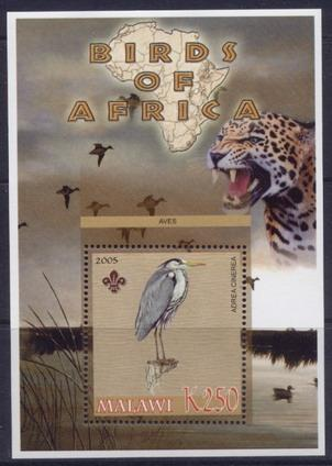 Malawi 2005 birds of africa grey heron souvenir sheet