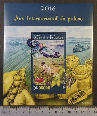St Thomas 2016 international year of pulses food plants beans birds s/sheet mnh