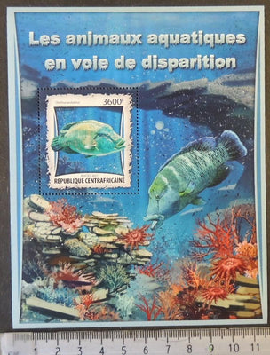 Central African Republic 2017 endangered species marine life fish coral s/sheet mnh