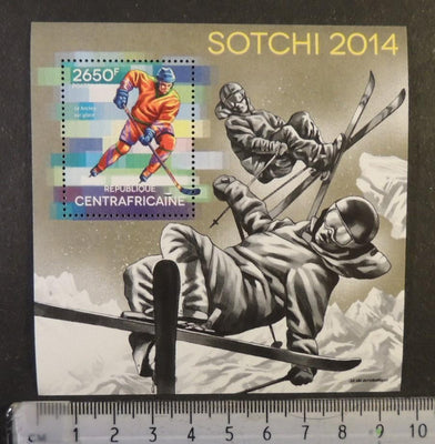 Central Africa 2014 sport olympics sochi ice hockey skiing s/sheet mnh