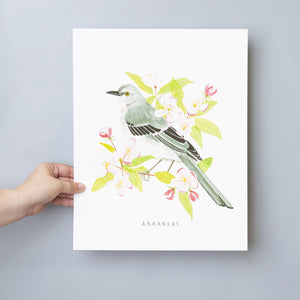 """Arkansas Bird"" Poster Art Print - Cabbage Rose"