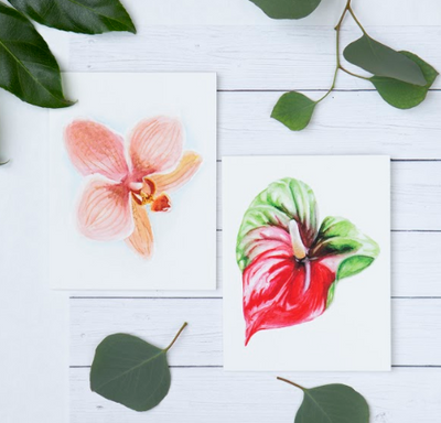 Tropical Card Set - Cabbage Rose