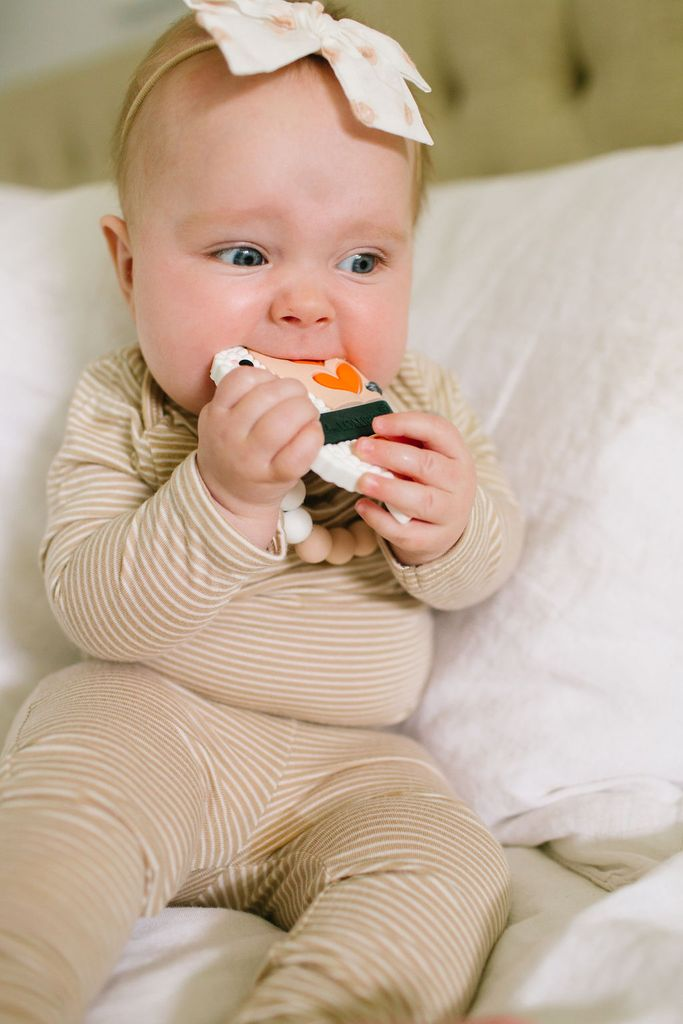 Ebi Silicone Teether w/ Clip