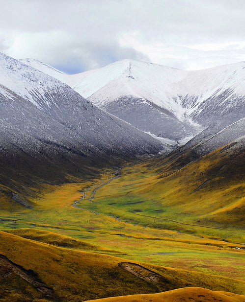 From Tibetan Plateau