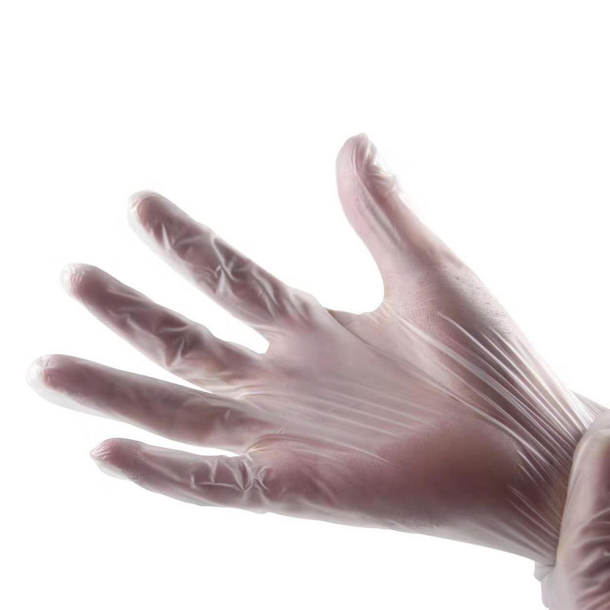 Latex-Free Vinyl Gloves (Set of 50 Pairs)