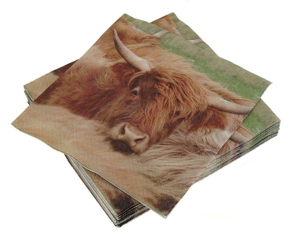 Glen Appin Of Scotland Highland Cow Coo 3 Ply Paper Napkins