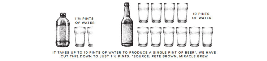 Small Beer Water Usage Infograph
