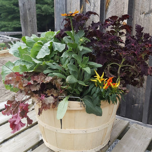 Autumn Planter - Large