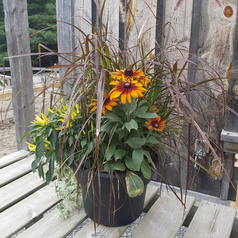 Autumn Planter 12""