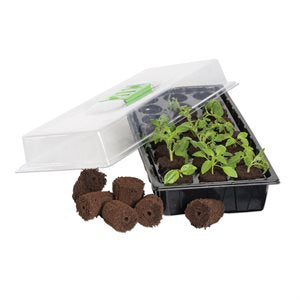 Grow Plug Germination Station