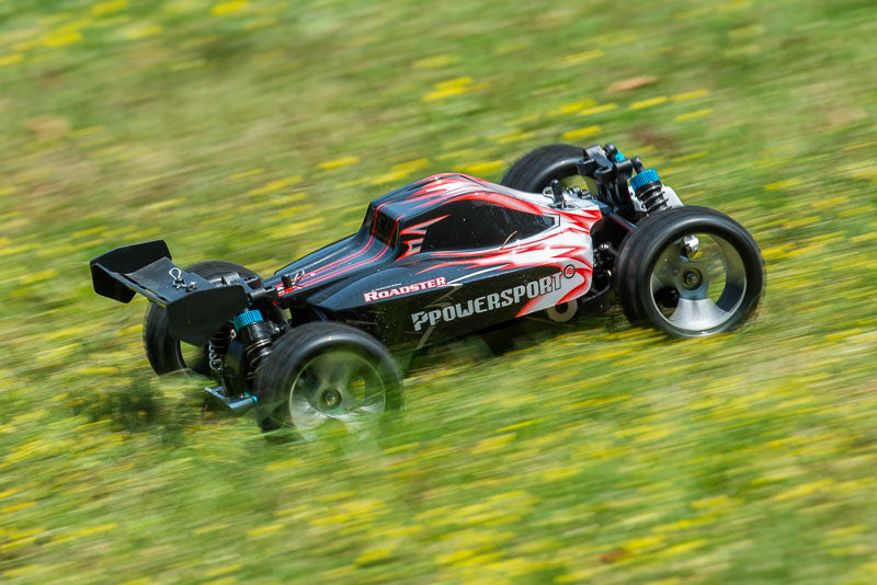rc buggy on grass