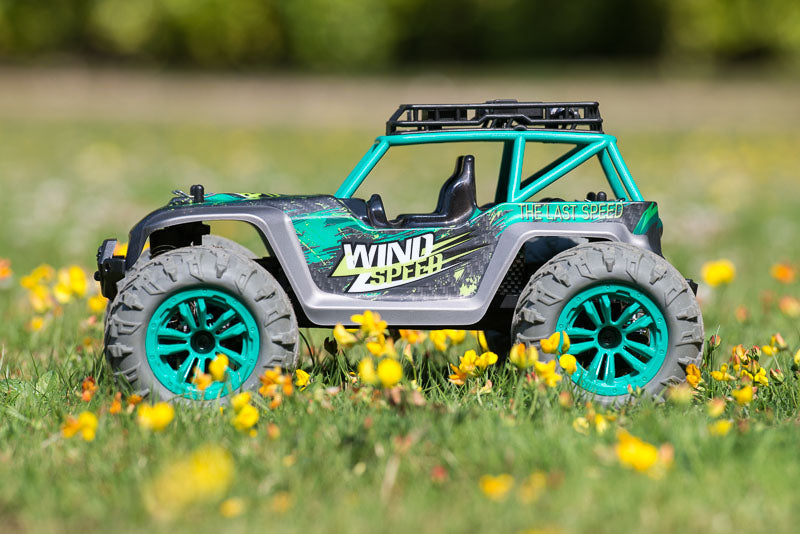 RC buggy side