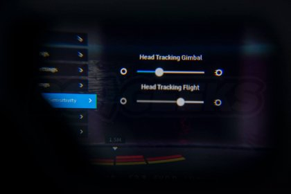DJI Mavic 2 Goggles menu head tracking sensitivity