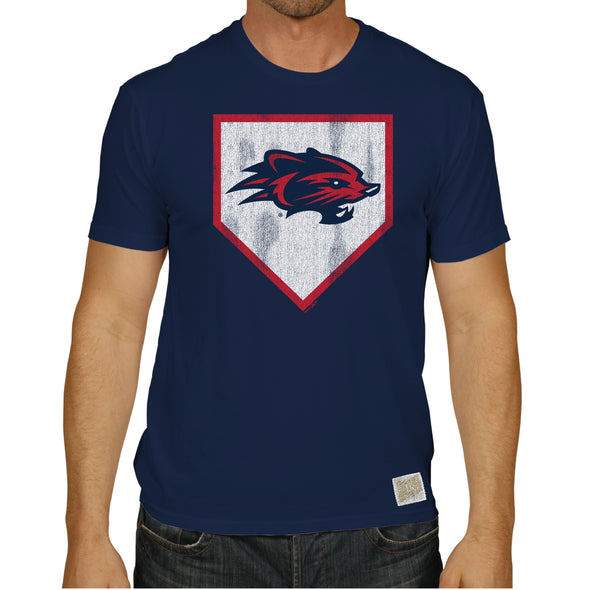 New Hampshire Fisher Cats This is Home