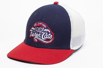 New Hampshire Fisher Cats Home Ranger