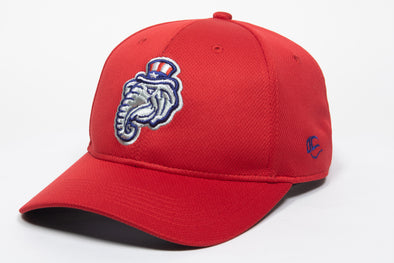 New Hampshire Fisher Cats Elephant Infielder