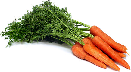 CARROTS- BUNCH