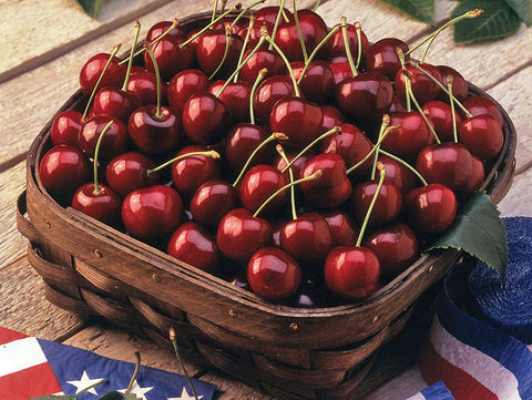 CHERRIES- BING