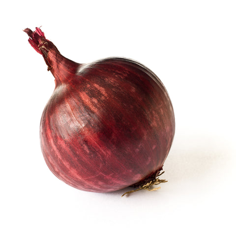 ONION- RED