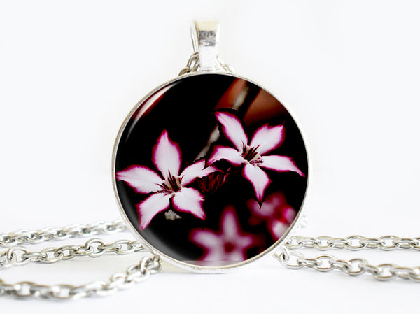 Pink White Flowers Necklace, Spring Flowers necklace,floral necklace, Floral Art Pendant, Pink White Flowers pendant, Pink White Flowers charm, flower charm, gift for women